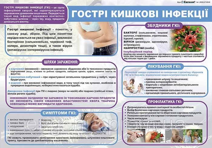профілактика шлунково-кишкових захворювань - Безпека життя та безпека праці